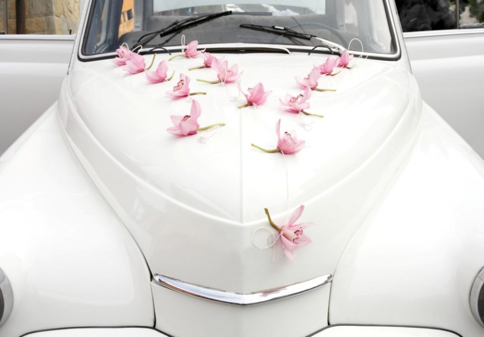 How to decorate the hood of the car with your own hands on the wedding?