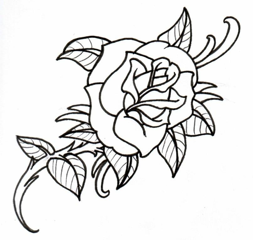 тату картинки распечатать эскизы роза натерла мякоть отправила