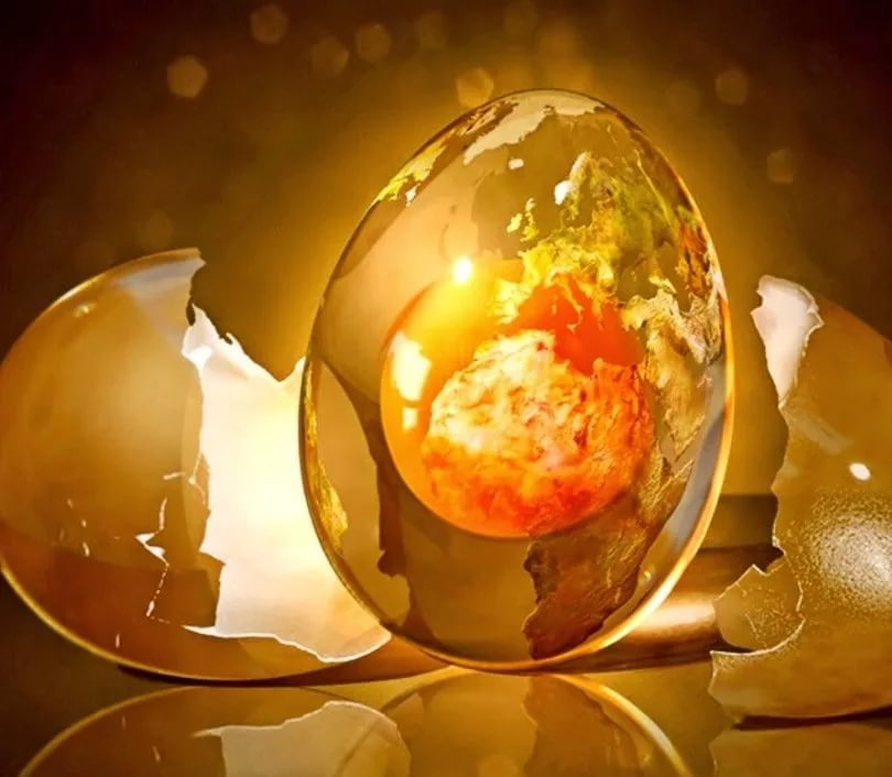 Hasar: Yumurta üzerinde kimin yaptığını nasıl öğrenirsiniz?