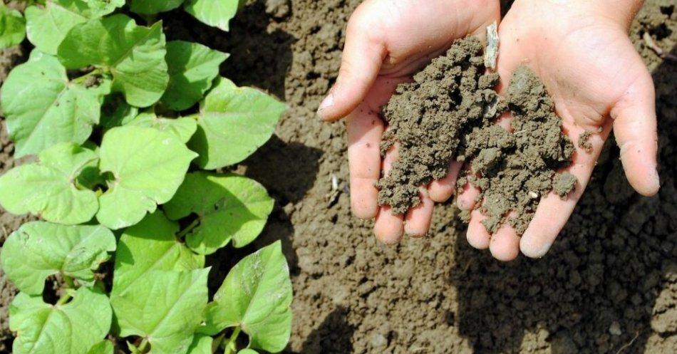 إعداد إعداد ومعالجة التربة