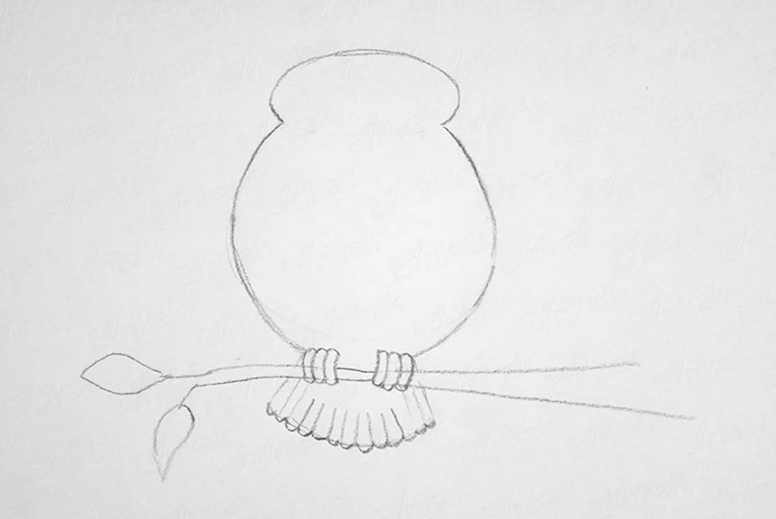 Unduh 57+ Foto Gambar Burung Hantu Dari Pensil  Paling Unik Gratis