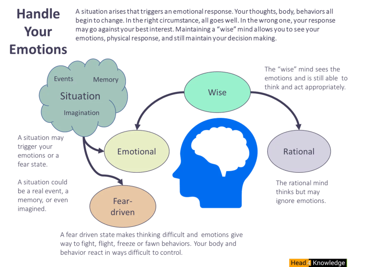 A graphic showing the four states of mind: fear, emotional, rational, and wise.
