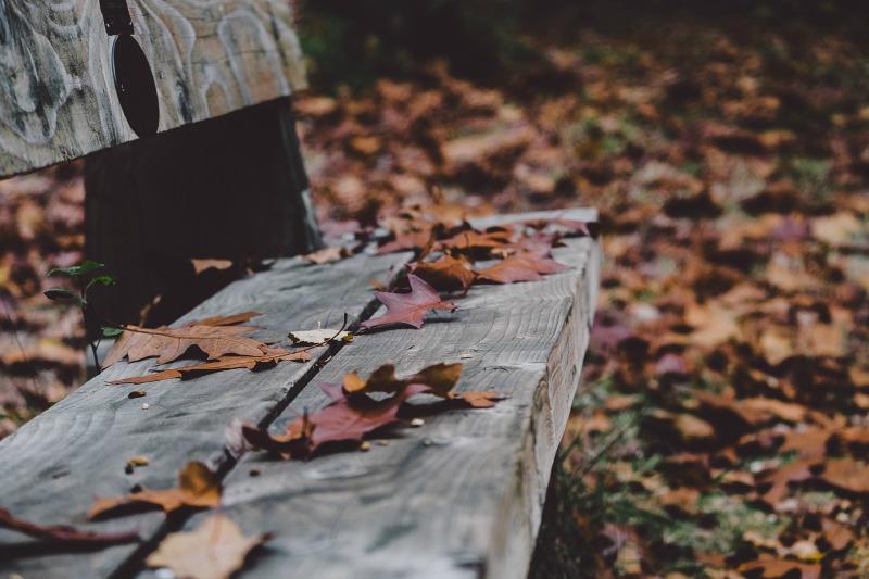 ławka - opowiadanie