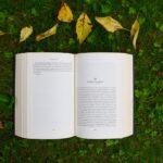 Uchwycić żywioł autorstwa Kena Robinsona – Inspirujące książki #1