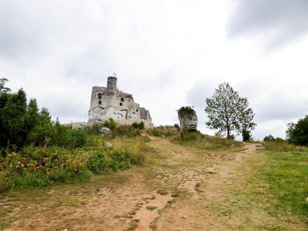 wegetuję jak ameba i inne pantofelki - zamek w Mirowie na Jurze