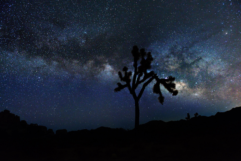 Joshua Tree National Park – Where I Wish I Was Tonight