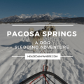 Dog Sledding Pagosa Springs Colorado