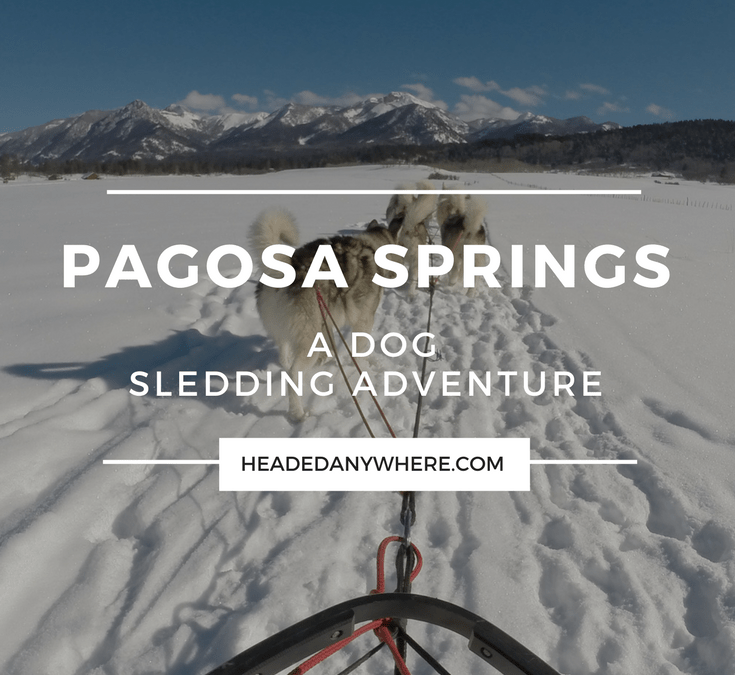 A Unique Mountatin Adventure – Dog Sledding in Pagosa Springs, Colorado