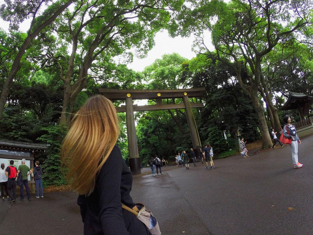 Tokyo Meiji Shrine Park Entrance