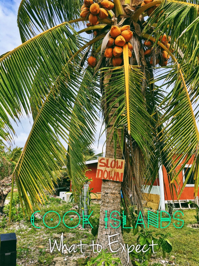 "Palm tree with ""slow down"" sign in front of house.Image text says ""Cook Islands: What to Expect"""