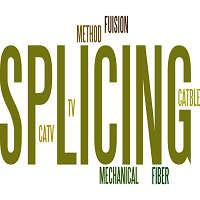 WHAT IS SPLICING METHOD