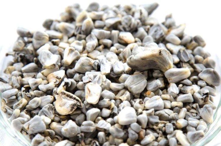 Как распознать камни в легких, глазах и носу