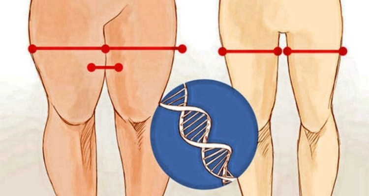 Потеря нежелательного веса путем активизации жиросжигающих гормонов