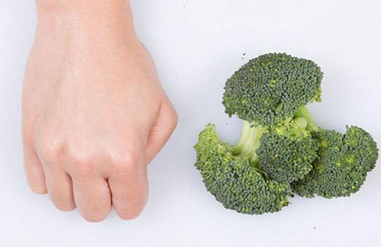 Сколько нужно съесть, чтобы похудеть: измеряем порции по размеру руки