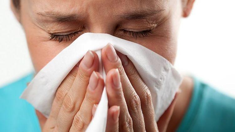Аллергия - эпидемия XXI века