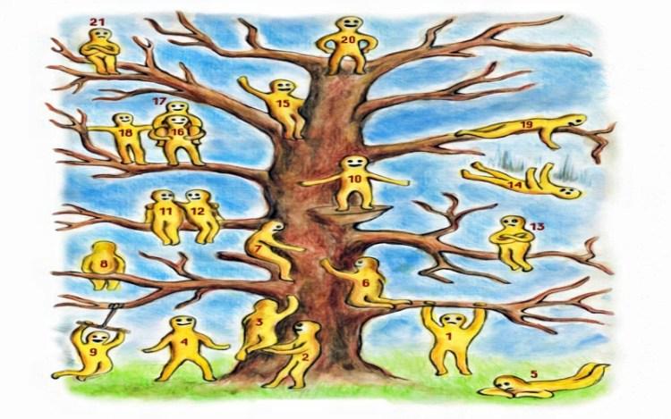 Выбрать человечка на дереве и познать себя: профессиональный психологический тест на раскрытие личности