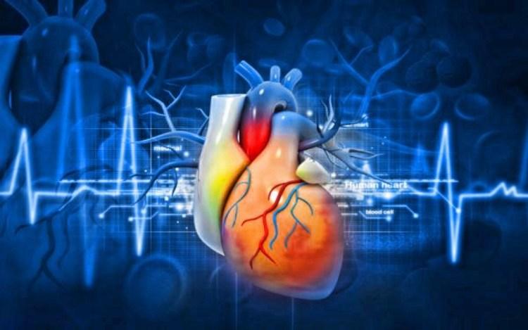 Боремся с болезнями сердца и сосудов народными методами