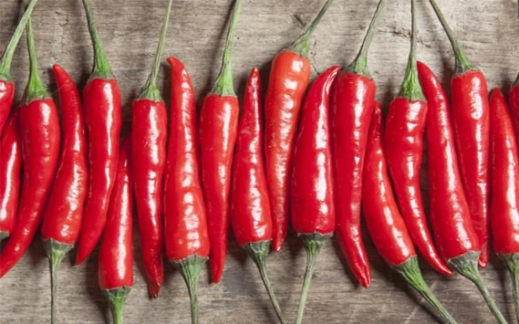 Скрытая польза острой пищи: не только бодрость, но и лечение
