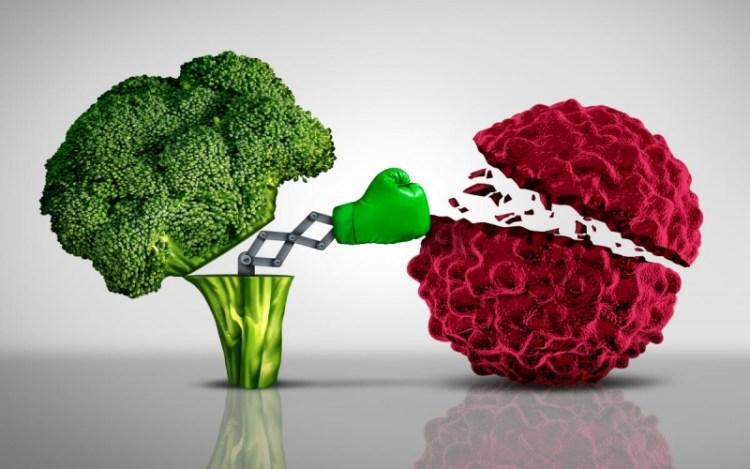 8 продуктов против рака, способные убивать раковые клетки в своем зародыше