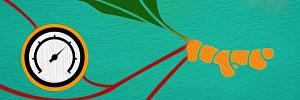 Куркума и ее полезные свойства в борьбе с высоким давлением