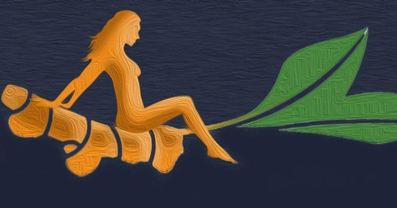 Куркума для похудения лучший вариант. Помимо предотвращения накопления жира, польза куркумы проявляется в усилении действия диет. Куркума для снижения веса необходима, ведь содержащийся в ней куркумин может превратить белую жировую ткань в бурую.