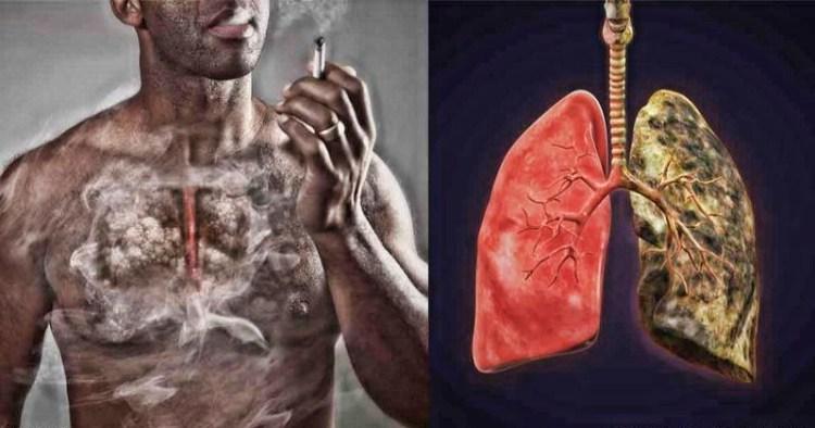 Кашель курильщика - 7 способов уменшить последствия курения