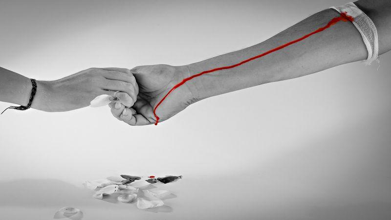 Что есть после сдачи крови на донорство