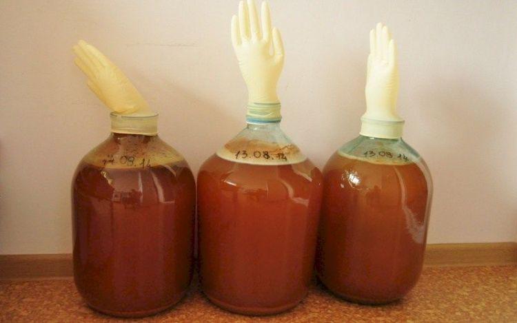 Домашнее вино из старого варенья: как дать новую жизнь сладким закруткам