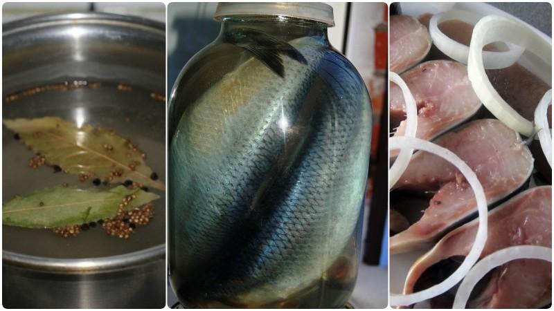 Малосольная селедка по домашнему рецепту: ларец вкуса и витаминов для всего организма
