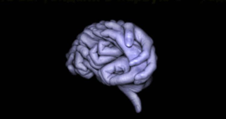 Психологический тест из 3 простых вопросов поможет узнать, насколько редкий ваш тип личности