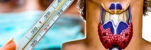 Тест Барнса: как определить здоровье щитовидки с помощью градусника