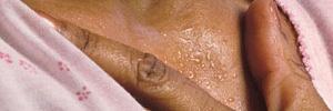 Менопауза у женщин не трагедия: как пережить климакс и сохранить здоровье