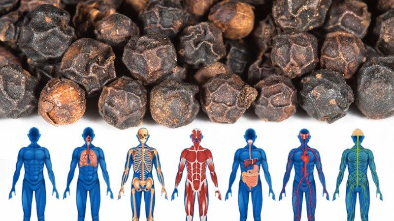 Против простуды и даже рака: черный перец и его 9 целительных свойств
