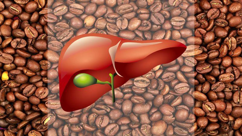 Польза кофе для печени и почему кофеманы живут дольше