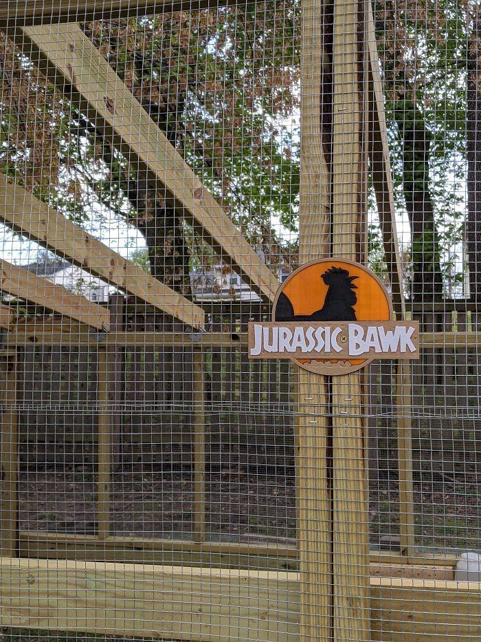 Курам (не) на смех: 30 раз, когда люди позавидовали жилищу домашних птиц