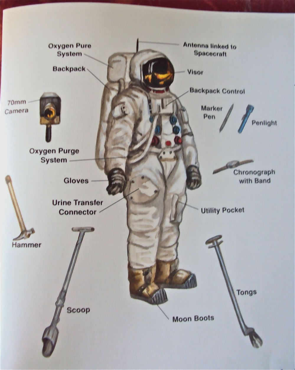 medium resolution of space suit diagram image s