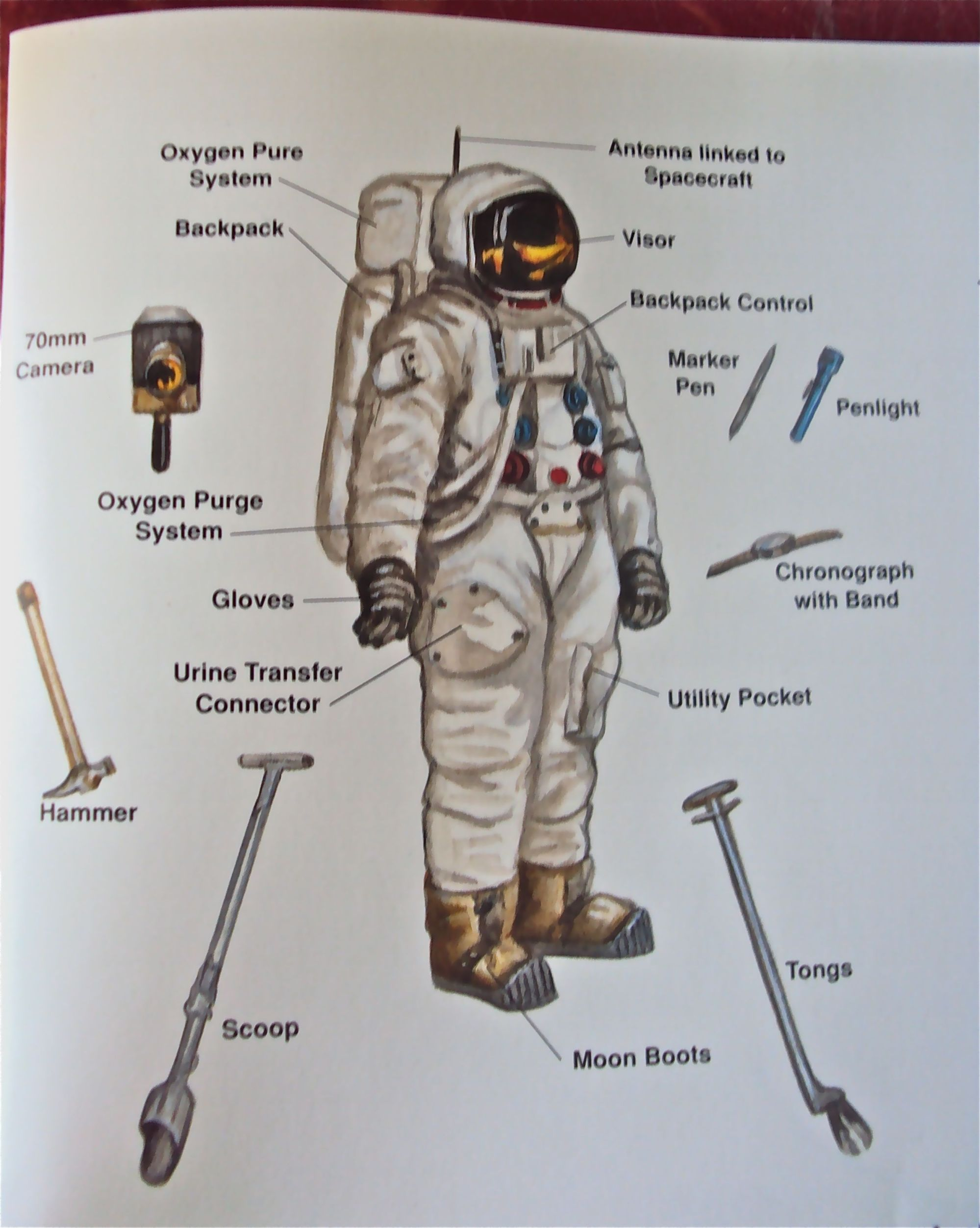 hight resolution of space suit diagram image s