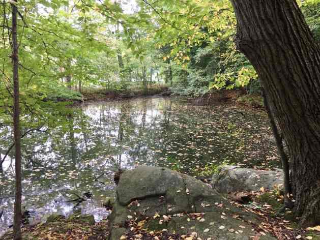 Catfish Pond—a good place to get in trouble