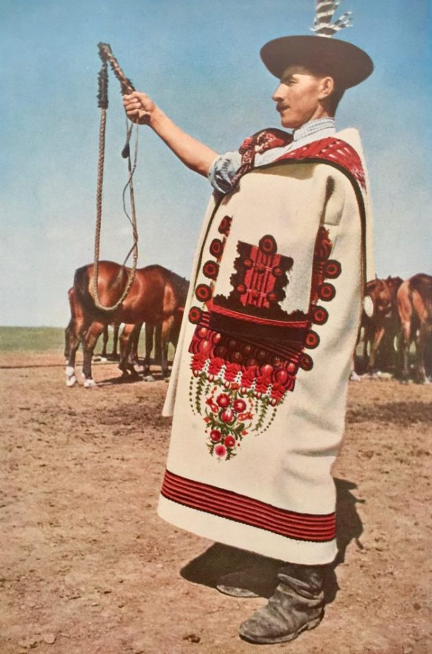 Hungarian cattle rangler