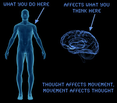 what you do with your body affects your brain.