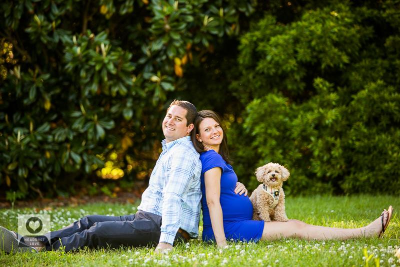 maternity photoshoot with pet