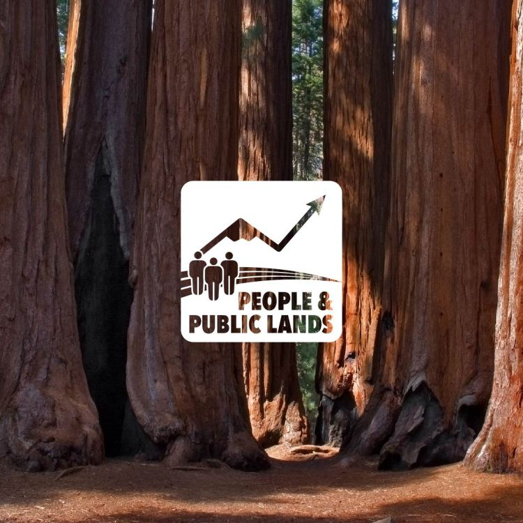 Public Lands Forum logo over image of the Sequoia Red Wood forest