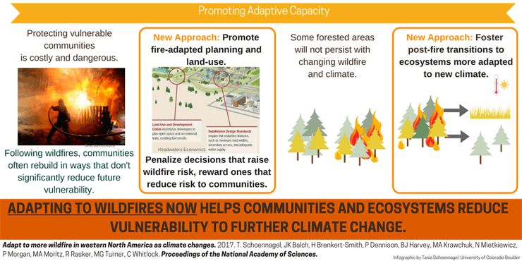 Adapt to more wildfire infographic