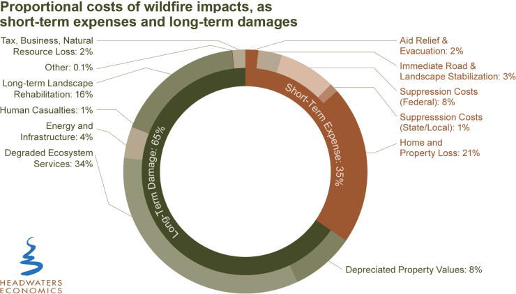 Proportional costs of wildfire impacts, as short-term expenses and long-term damages