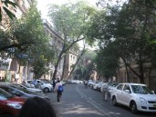 Ballard Estate, one block away from the craziness of Shahid Bhagat Singh Rd, but so much calmer.