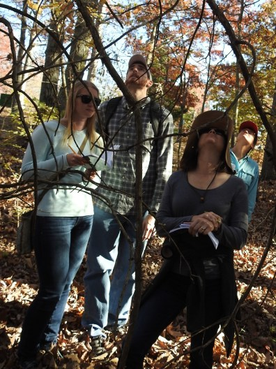 Morgan and Ben Martindell, Cohort V, and Janet James, Cohort III working on their tree ID skills