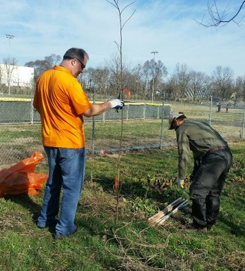 Chris Shaw and Chris from the Nature Conservancy save a tree.