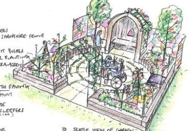 Vegetable Garden Sketch