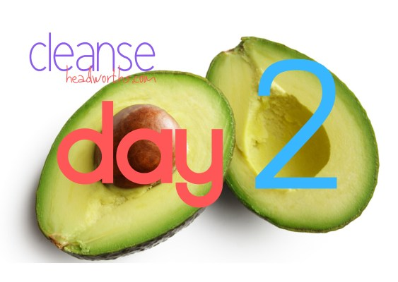 cleanse blog icon day 2