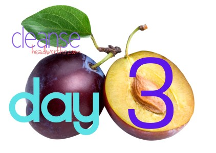 cleanse blog icon day 3